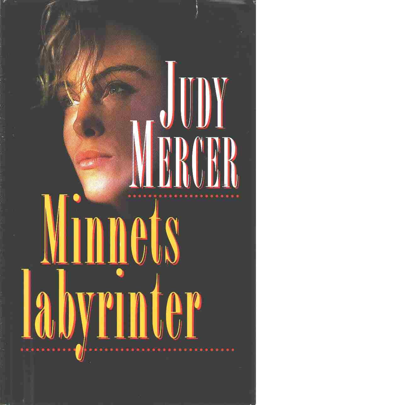 Minnets labyrinter - Mercer, Judy