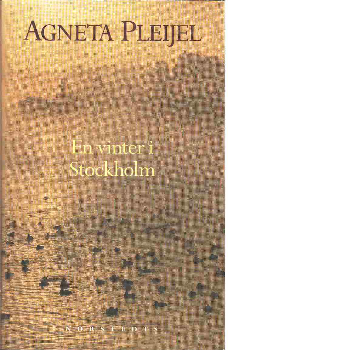 En vinter i Stockholm - Pleijel, Agneta