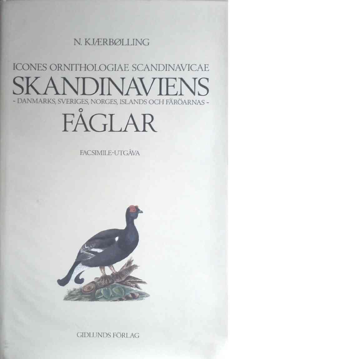 Skandinaviens Danmarks, Sveriges, Norges, Islands och Färöarnas fåglar : Icones ornithologiae Scandinavicae - Kjærbølling, Niels