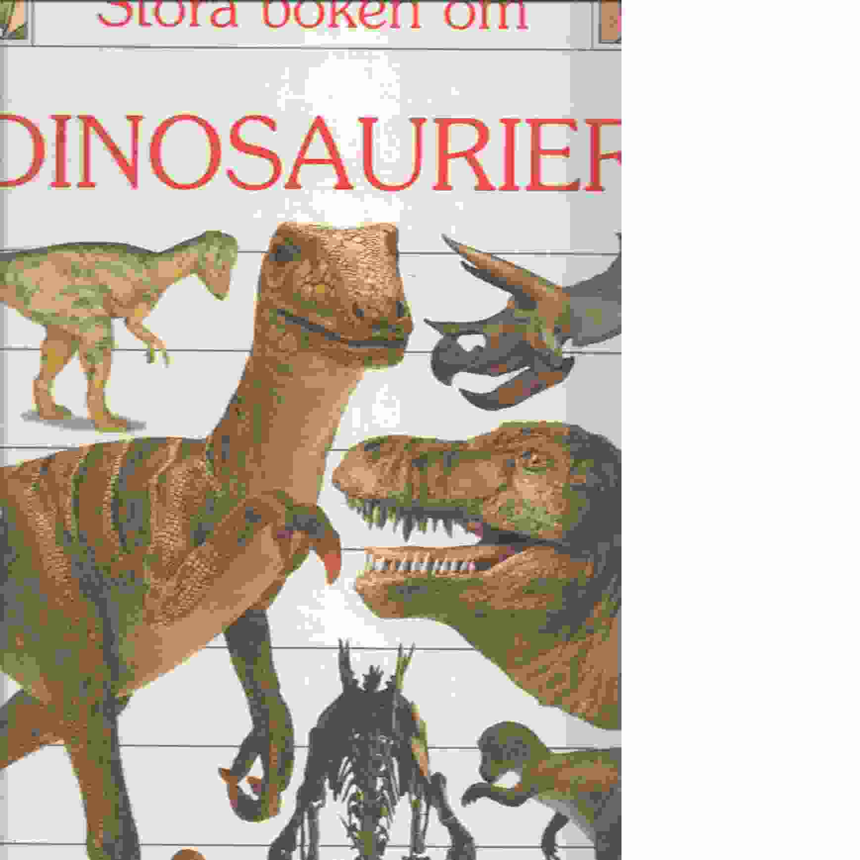 Stora boken om dinosaurier - Wilkes, Angela