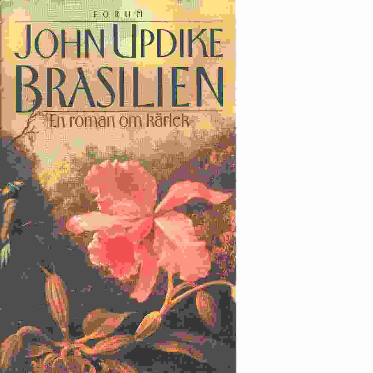 Brasilien - Updike, John