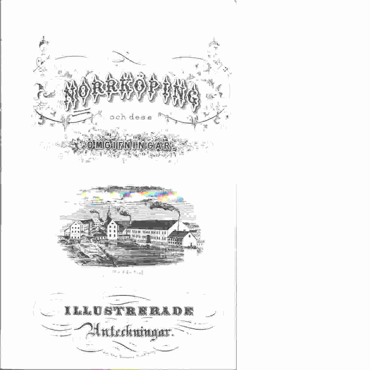 Norrköping och dess omgifningar - Hertzman, Fredrik
