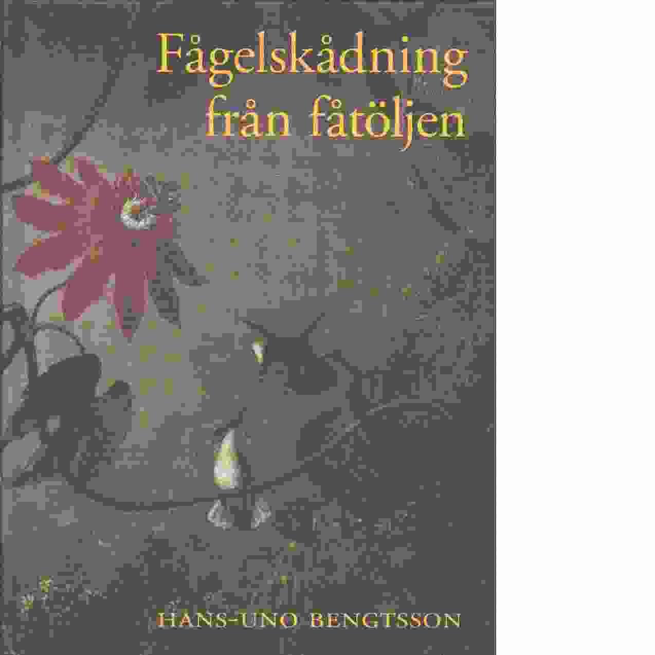 Fågelskådning från fåtöljen - Bengtsson, Hans-Uno