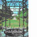 Besök i svenska trädgårdar - Burman, Eva och Eriksson, Henry