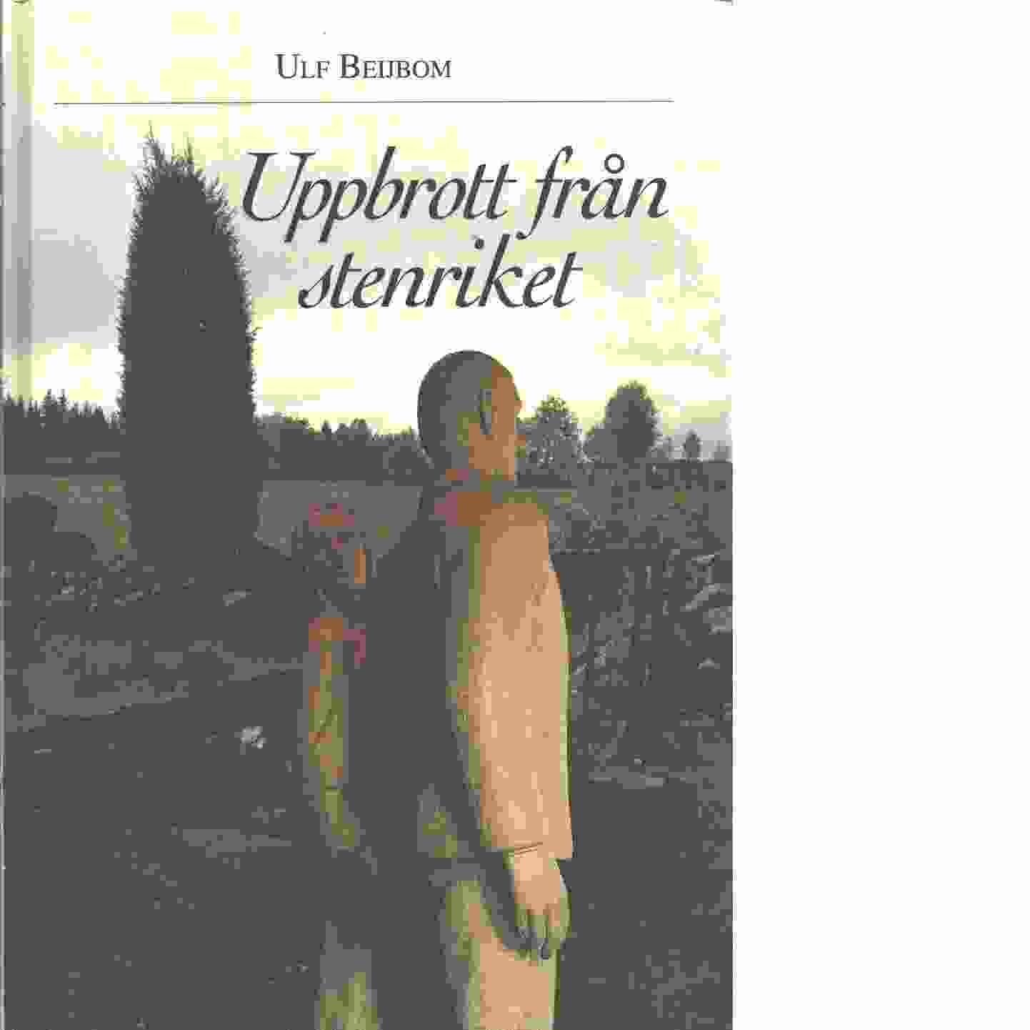 Uppbrott från stenriket : utvandring från Kronoberg och kronobergare bortom haven  - Beijbom, Ulf
