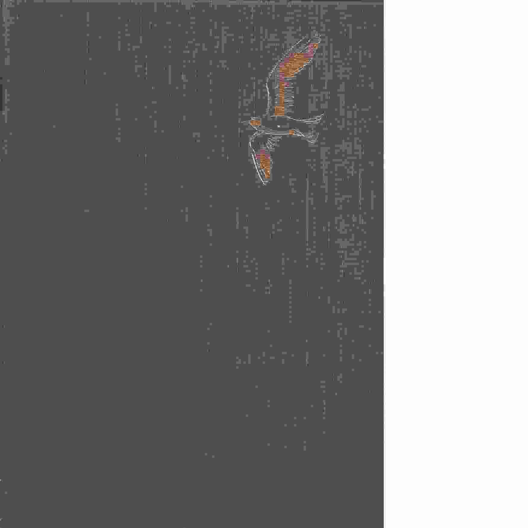 Våra fåglar i Norden 1-4 - Curry-Lindahl, Kai