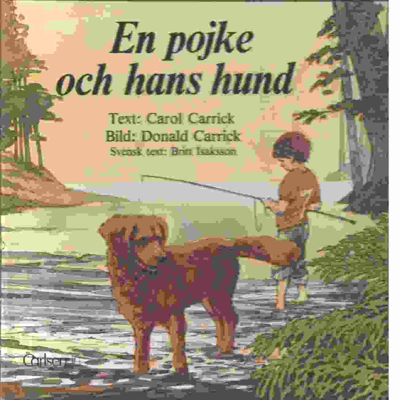 En pojke och hans hund : olyckan  - Carrick, Carol  och Carrick, Donald