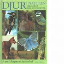 Djur i naturen : däggdjur, fåglar, insekter  - Bergman Sucksdorff, Astrid