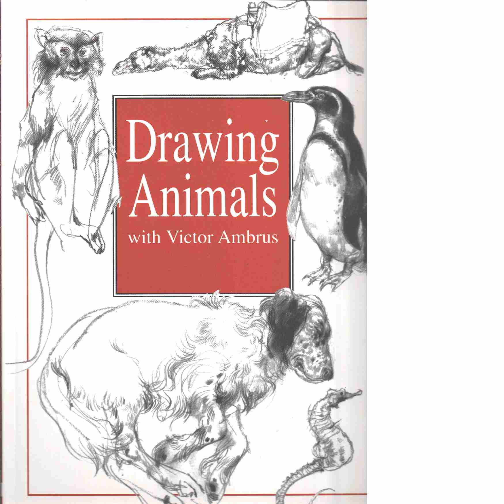 DRAWING ANIMALS - AMBRUS, VICTOR and AMBRUS, MARK