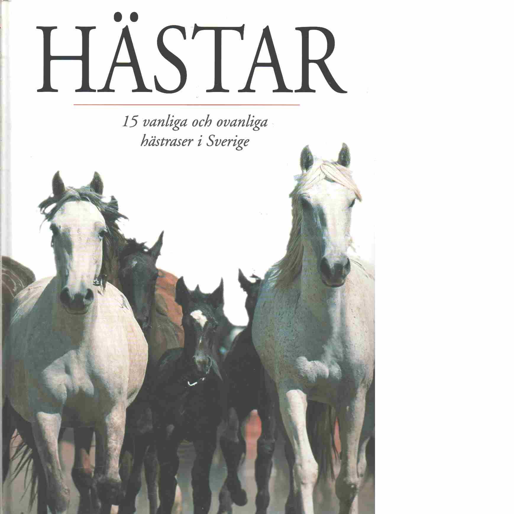 Hästar : 16 vanliga och ovanliga hästraser i Sverige  - Genberg, Mats