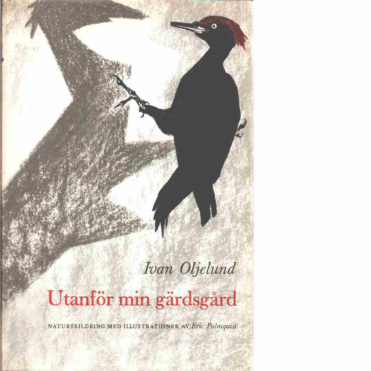 Utanför min gärdsgård : mest fågelhistorier  - Oljelund, Ivan