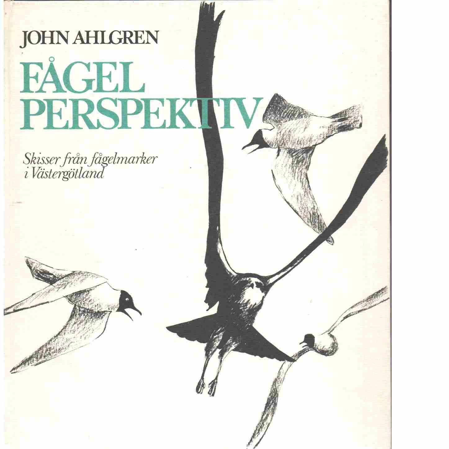Fågelperspektiv : skisser från fågelmarker i Västergötland - Ahlgren, John