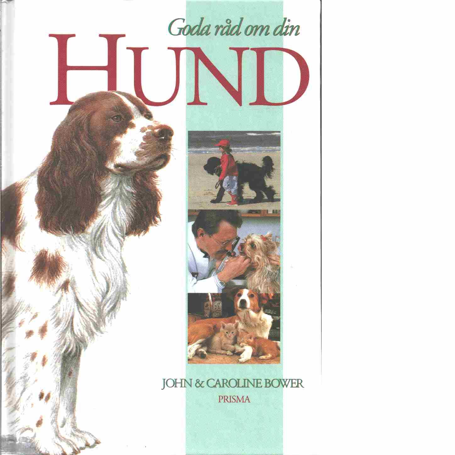 Goda råd om din hund  - Bower, John och Bower, Caroline
