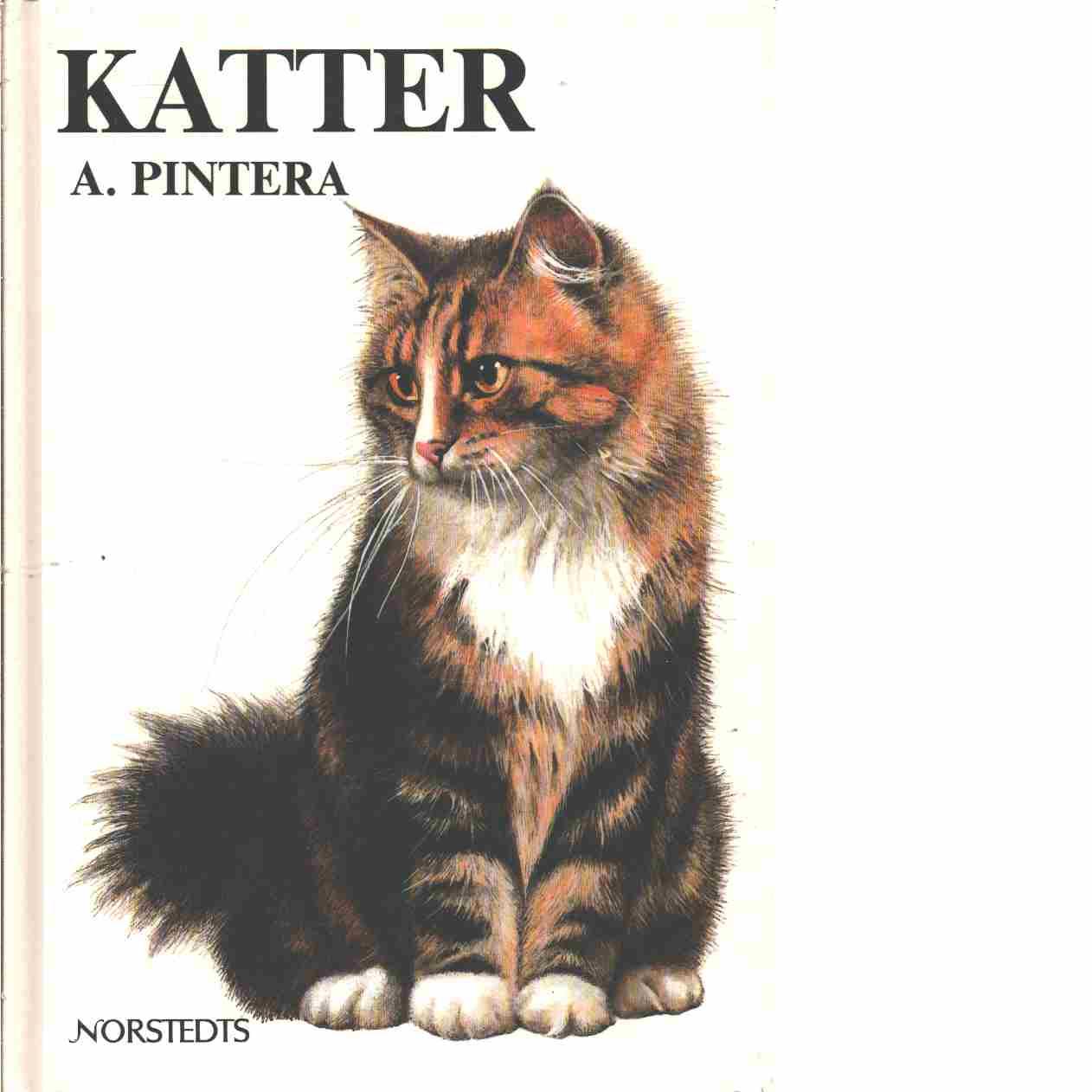 Katter  - Pintera, Albert