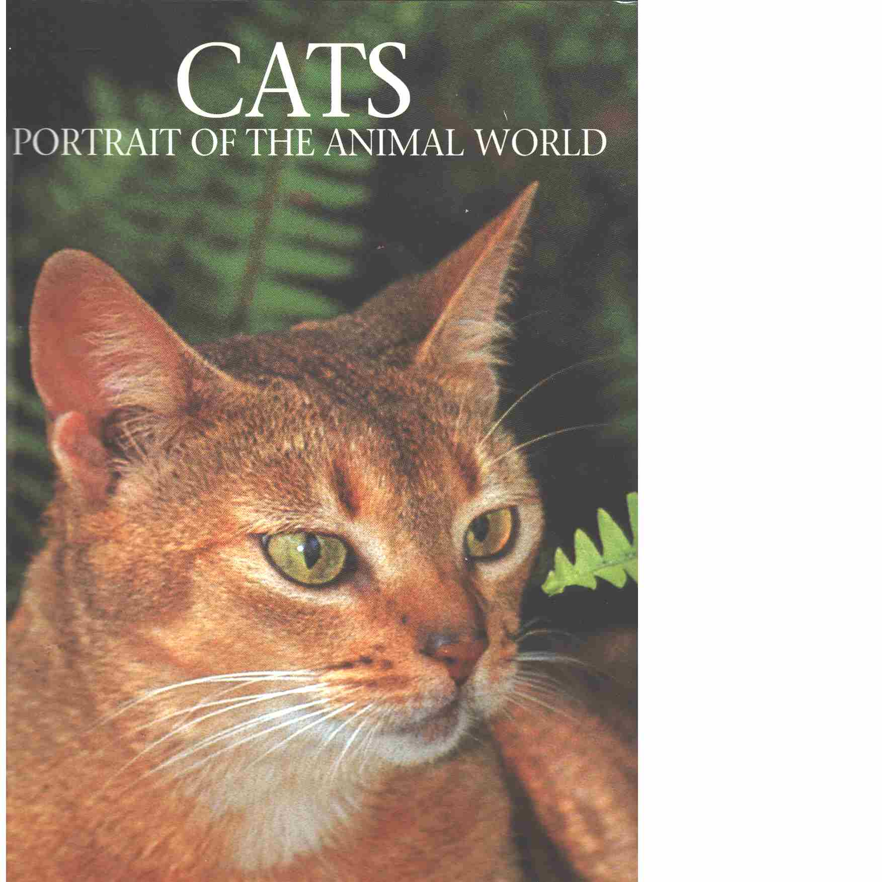 Cats (Portraits of the Animal World) - Schenck, Marcus and Caravan, Jill