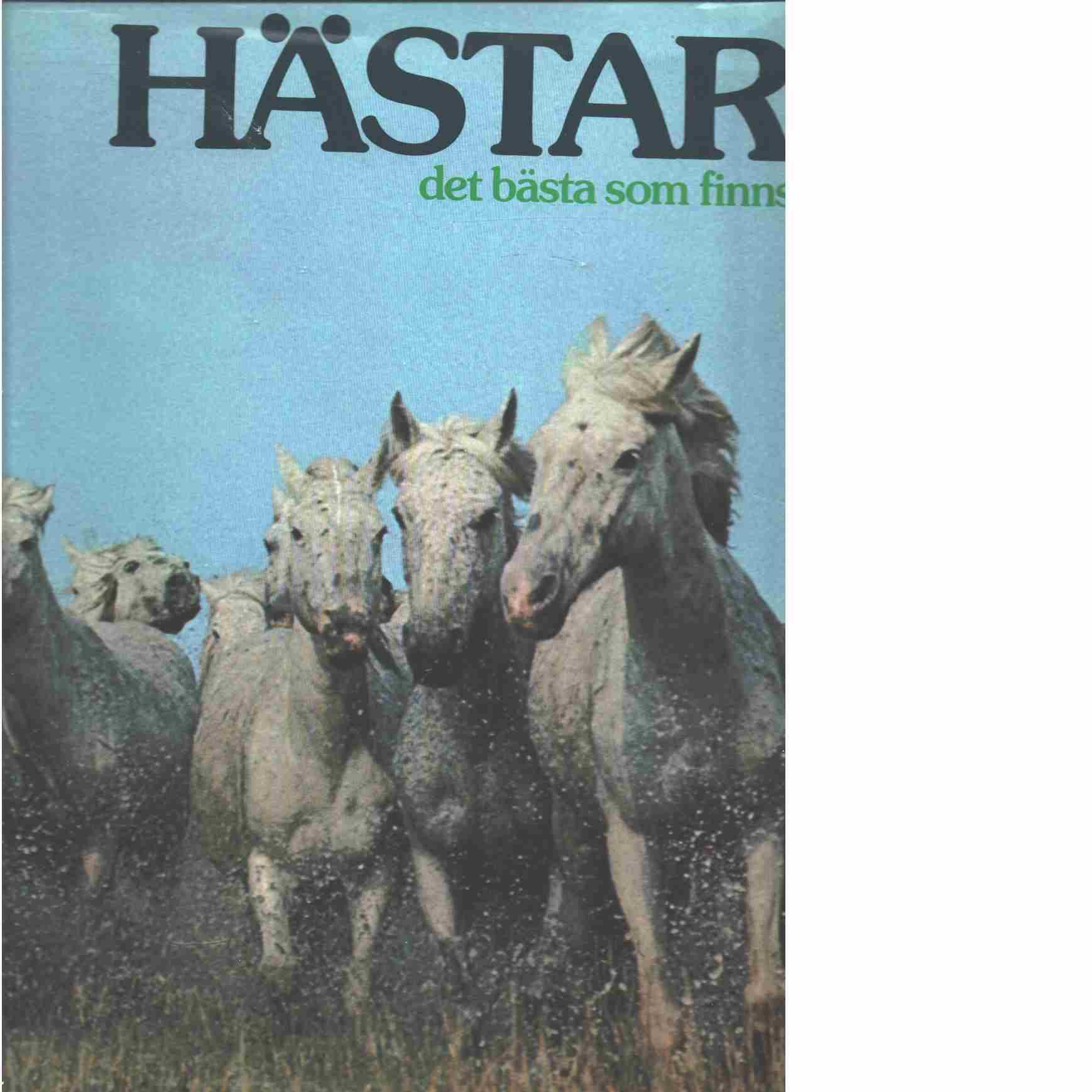 Hästar : det bästa som finns - Alcock, Anne
