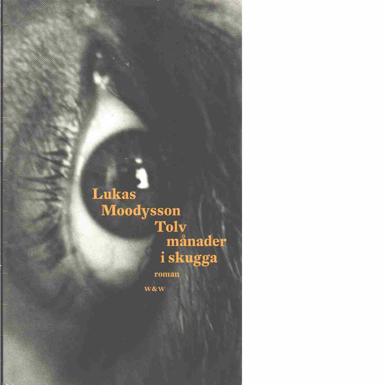 Tolv månader i skugga  - Moodysson, Lukas