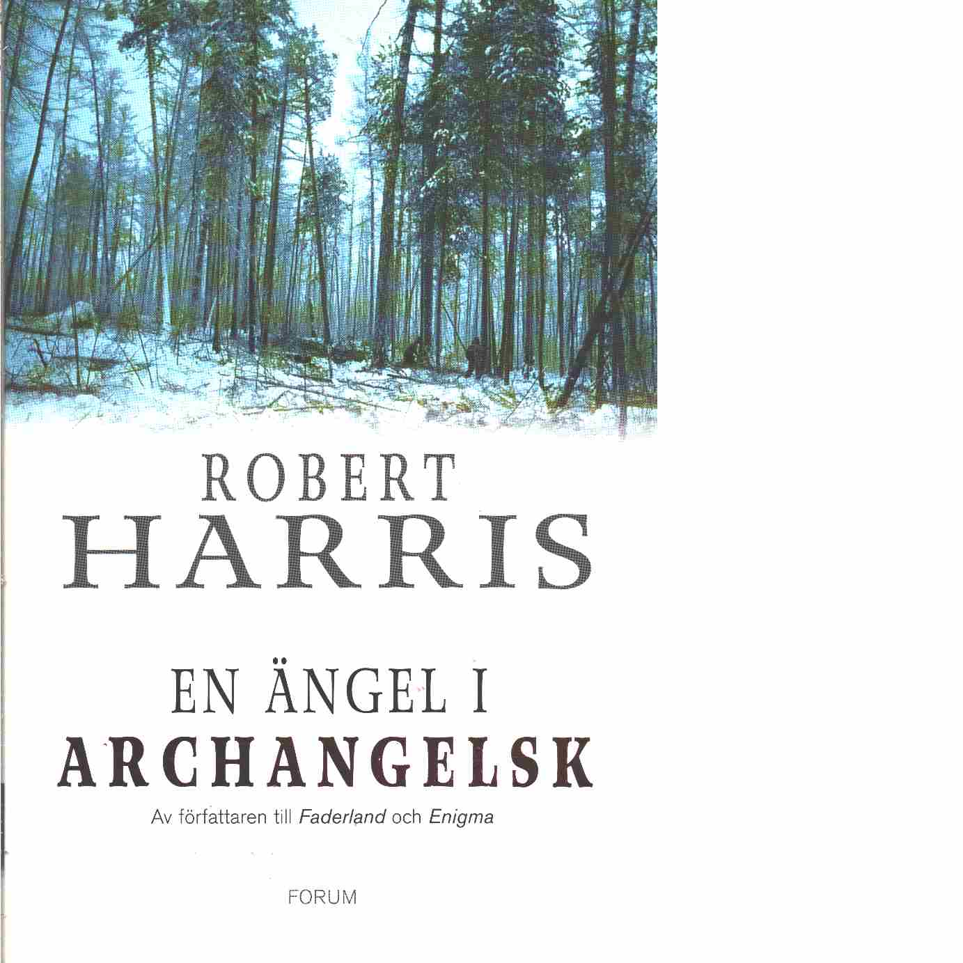 En ängel i Archangelsk  - Harris, Robert