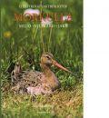 Illustrerat jaktbibliotek - Morkulla : miljö - viltvård - jakt - Denuc, Jean Pierre