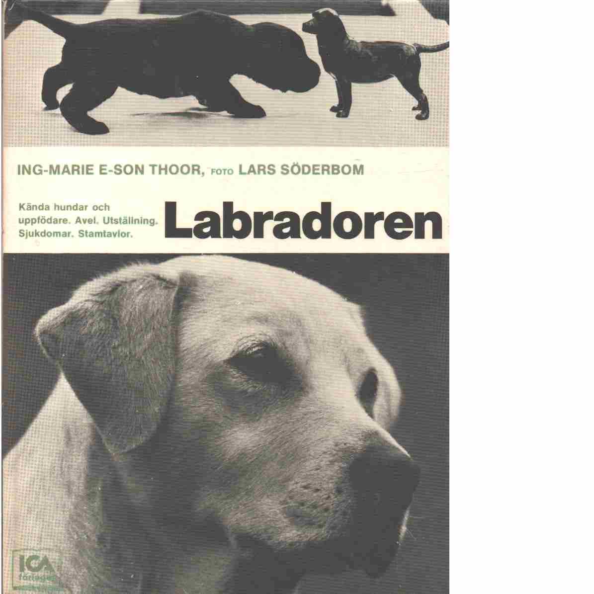 Labradoren - Thoor, Ing-Marie E-son