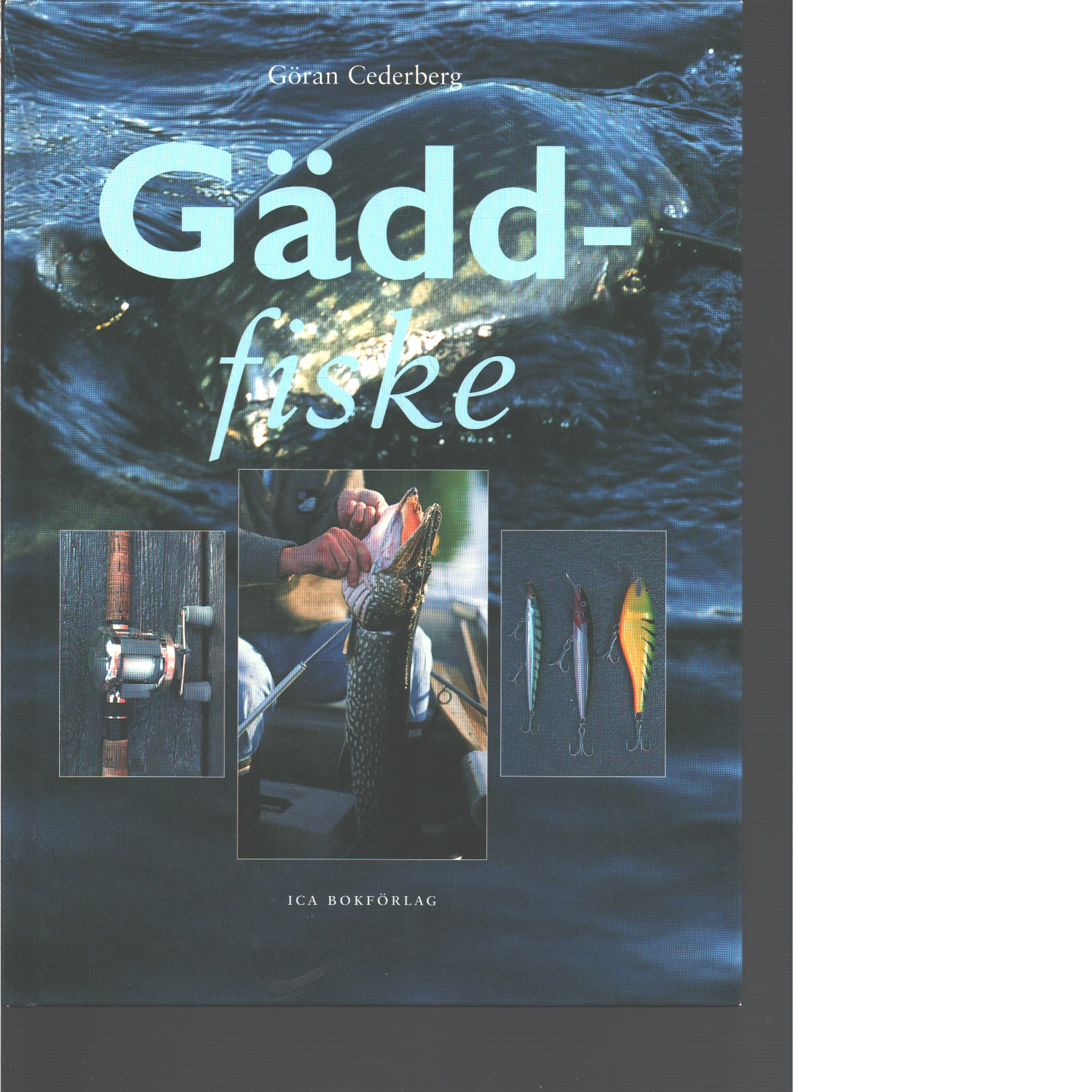 Gäddfiske  - Cederberg, Göran