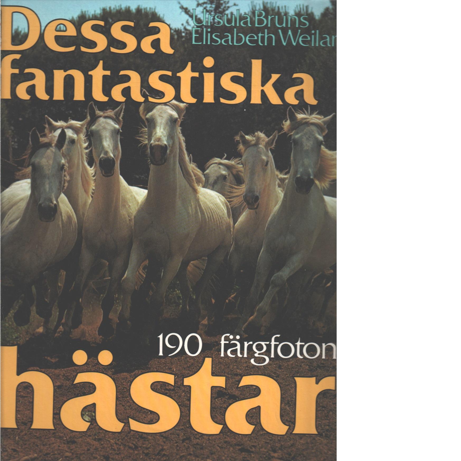 Dessa fantastiska hästar - Bruns, Ursula och Weiland, Elisabeth