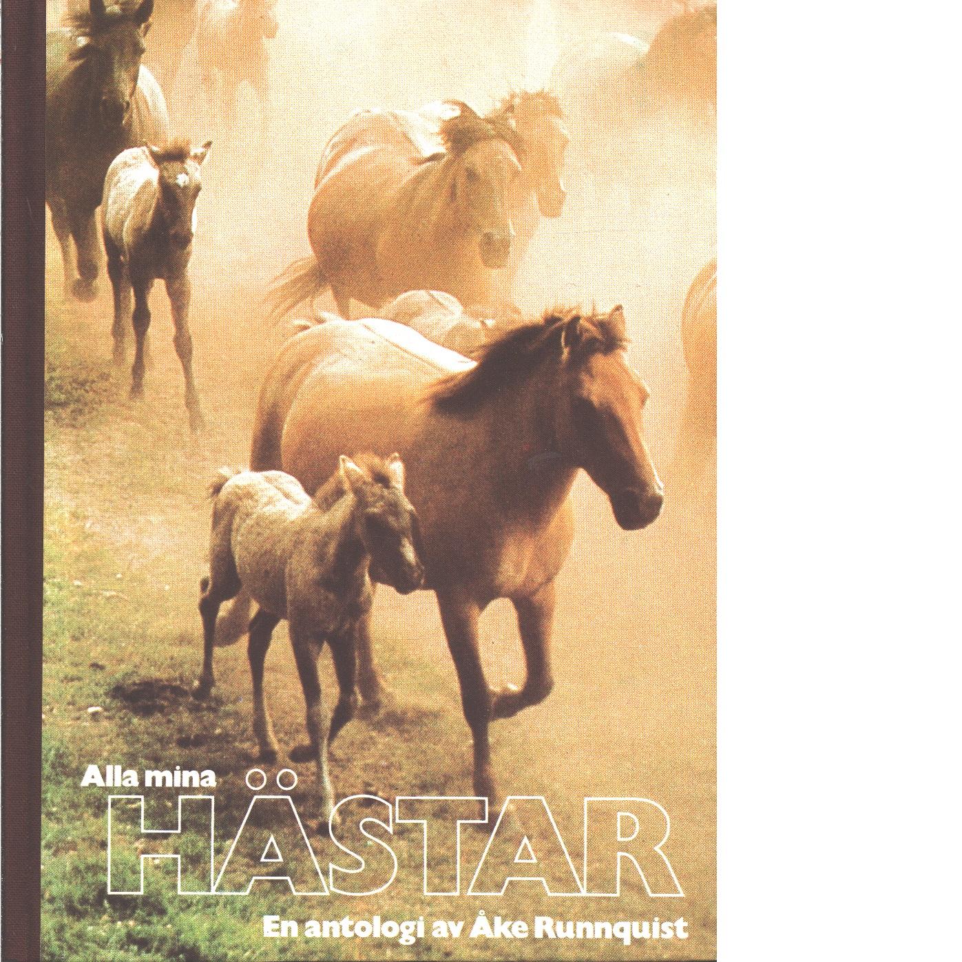 Alla mina hästar : spännande berättelser och roliga fakta  - Red.