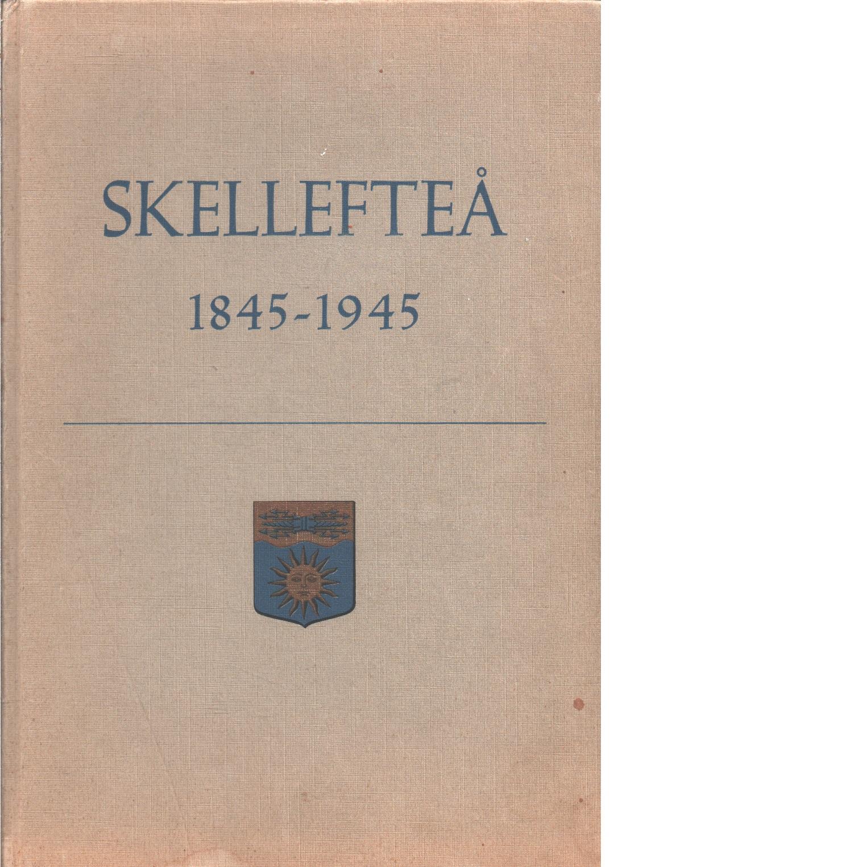 Skellefteå stads historia / på uppdrag av Skellefteå stad skriven till 100-årsjubileet  - Fahlgren, Karl
