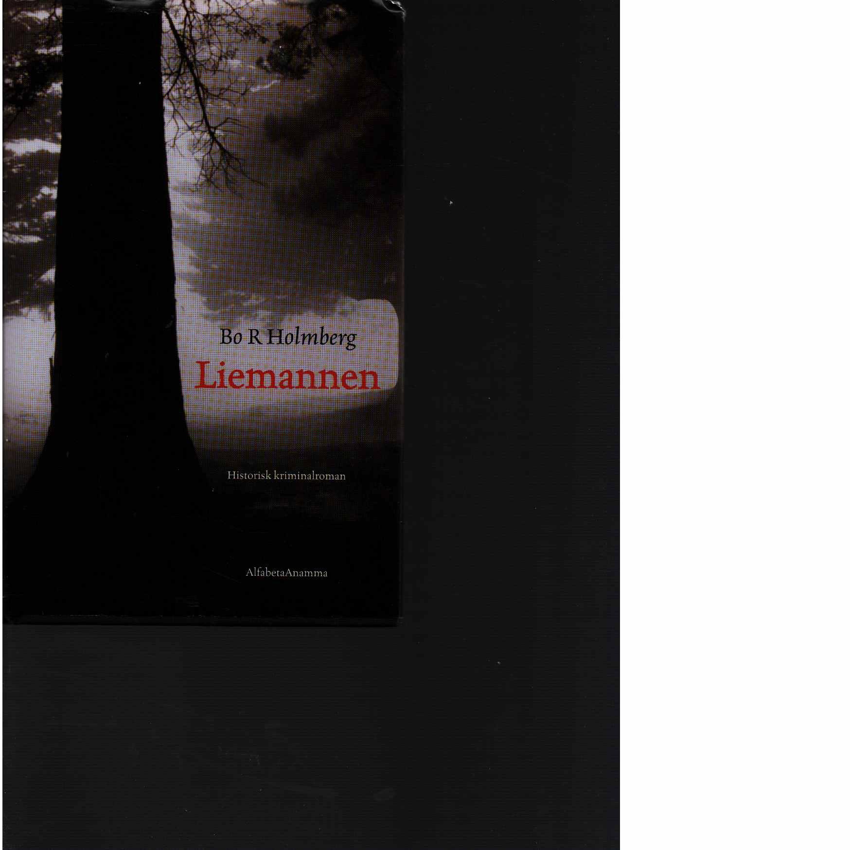 Liemannen  - Holmberg, Bo R.