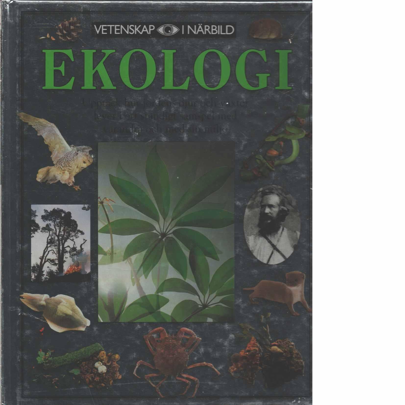 Ekologi - Pollock, Steve