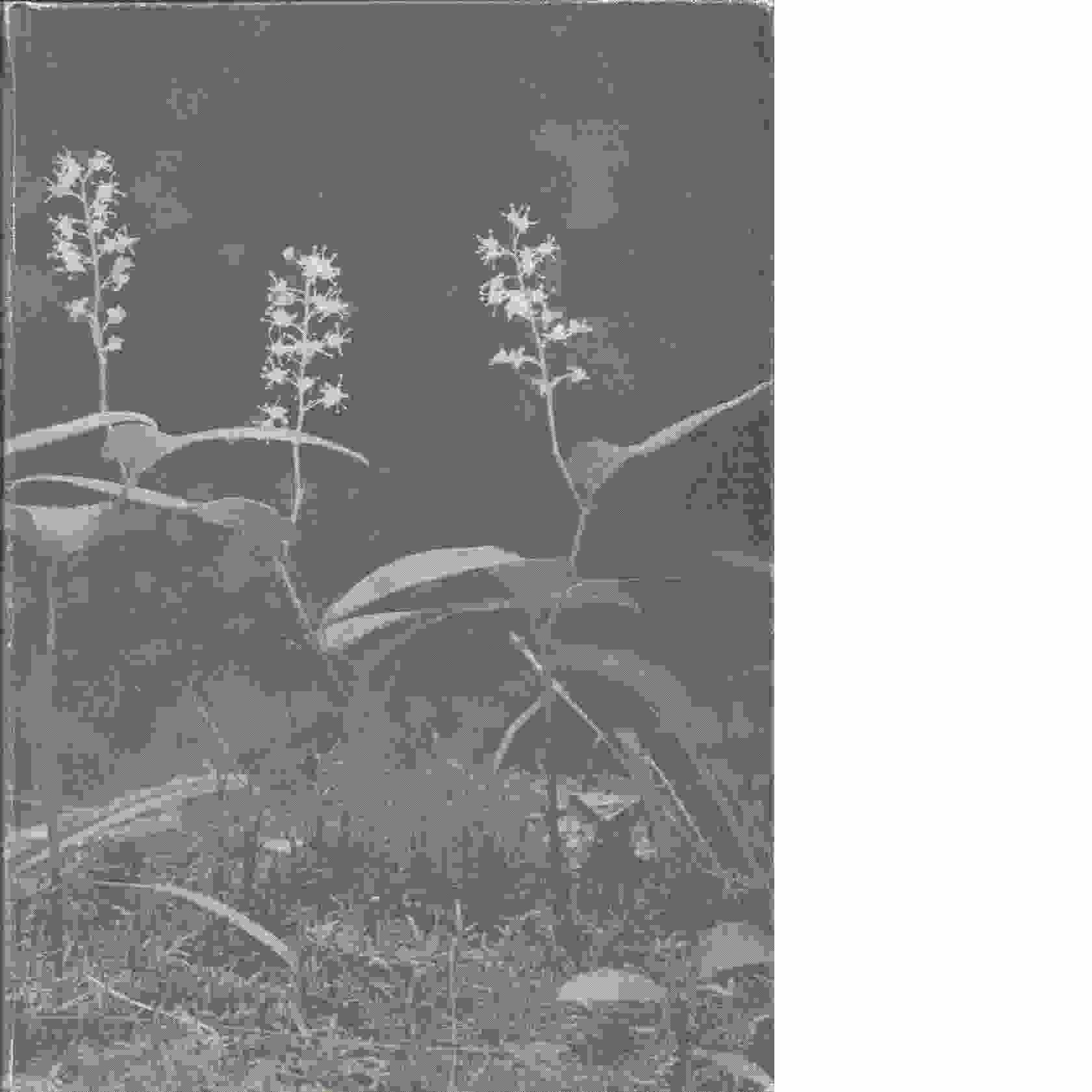 Pärlugglans skog - Lidman, Hans