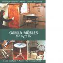 Gamla möbler får nytt liv - Hagen, Anne Cathrine