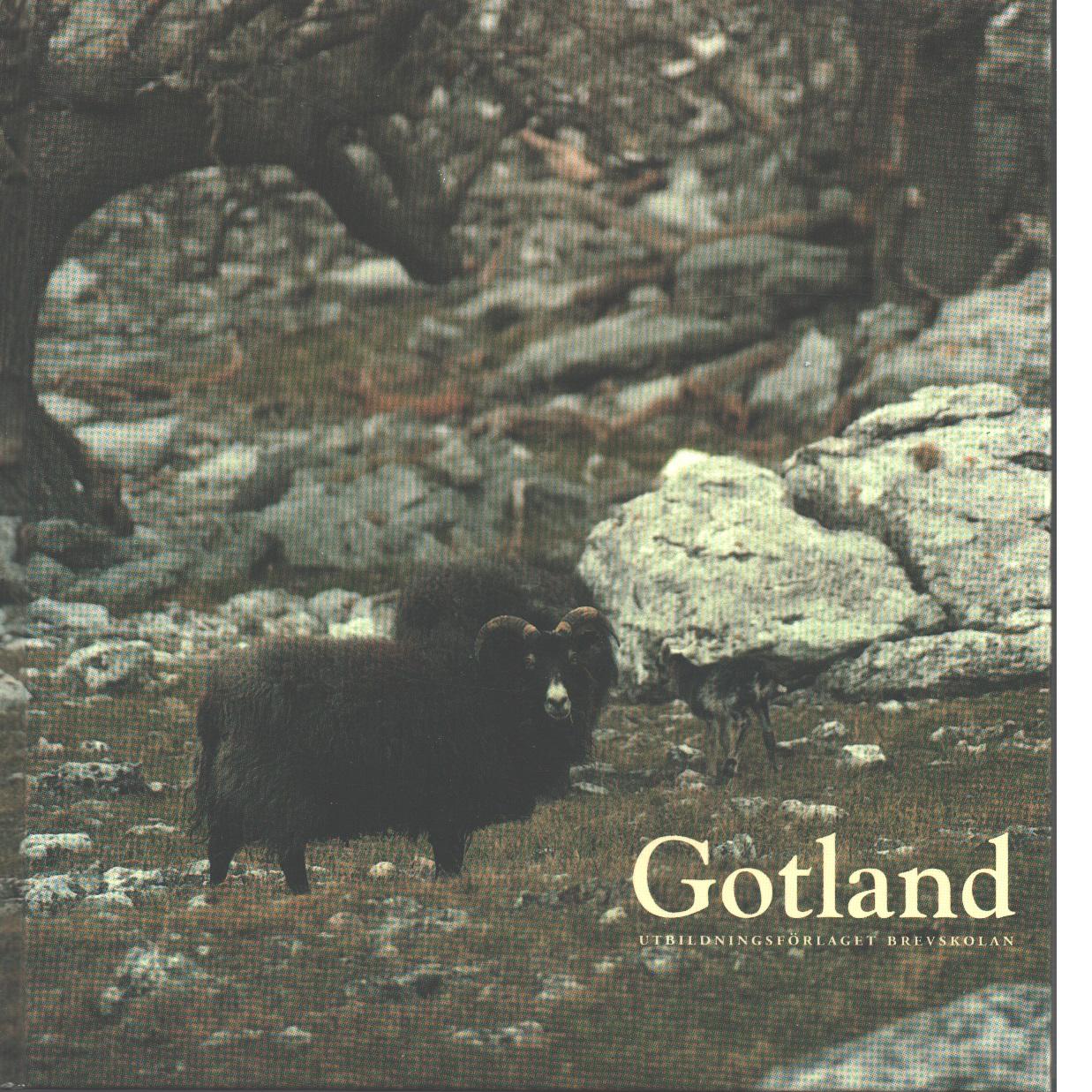 Gotland : den förhäxade ön - Bergqvist, Ulf och Wennerdahl, Maj