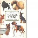 Hundar i färg - Swedrup, Ivan
