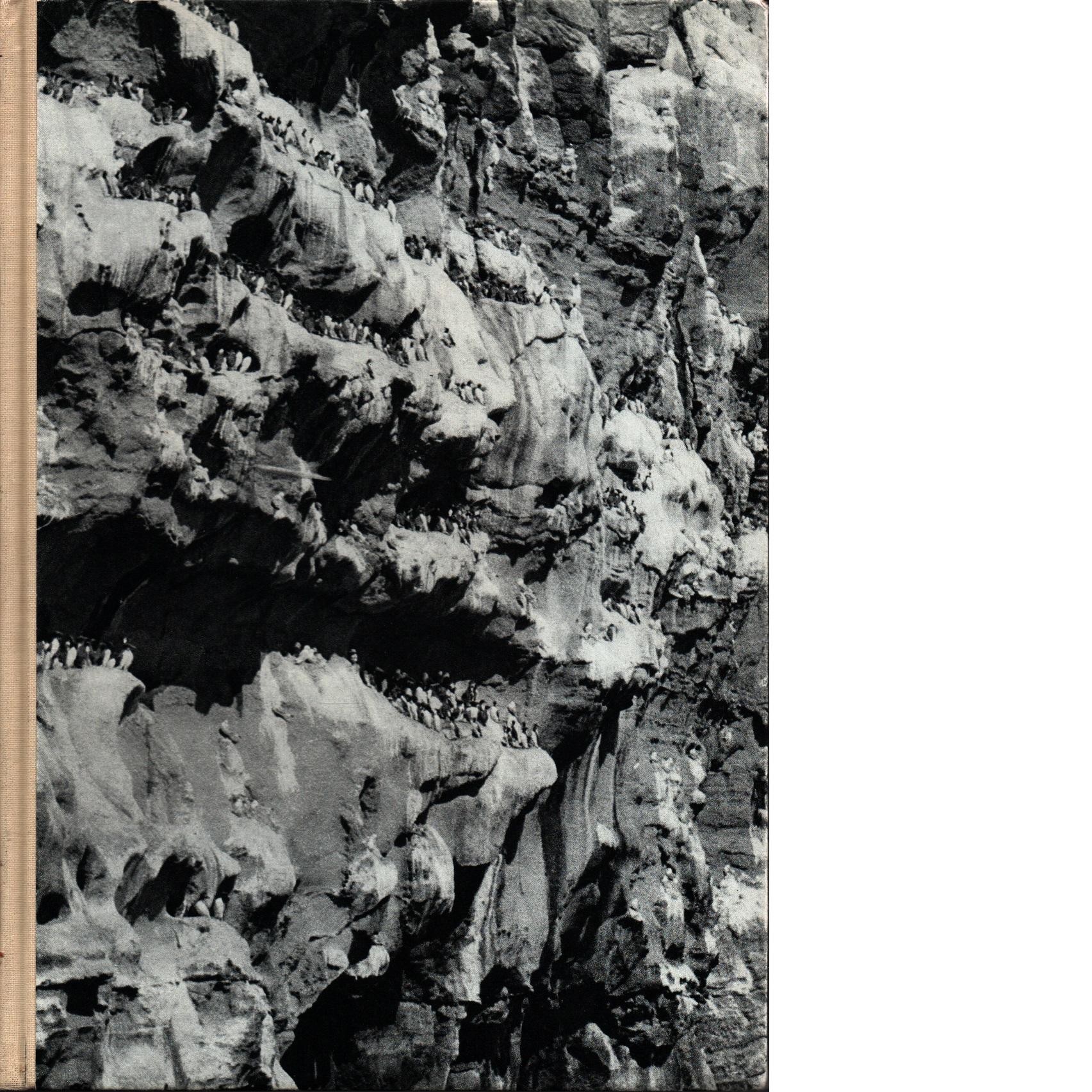 Färöarna - fåglar och fångster - Jonsson, Sixten och Linnman, Nils
