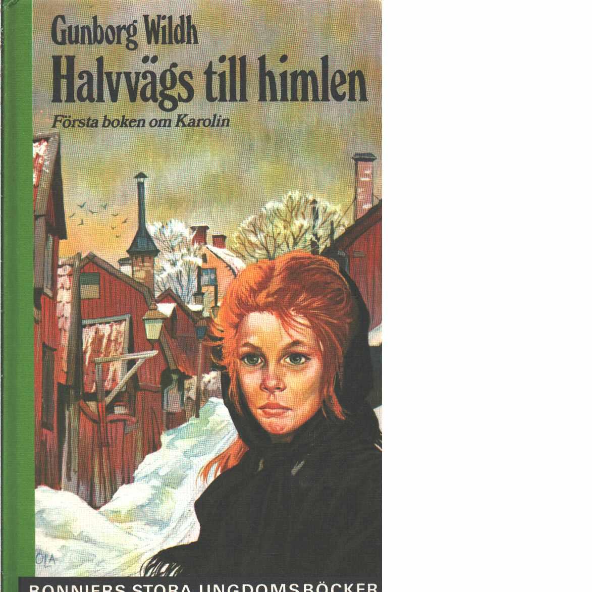 Halvvägs till himlen - Wildh, Gunborg