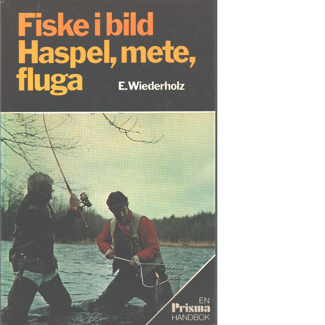 Fiske i bild : haspel, mete, fluga - Wiederholz, Ekkehard