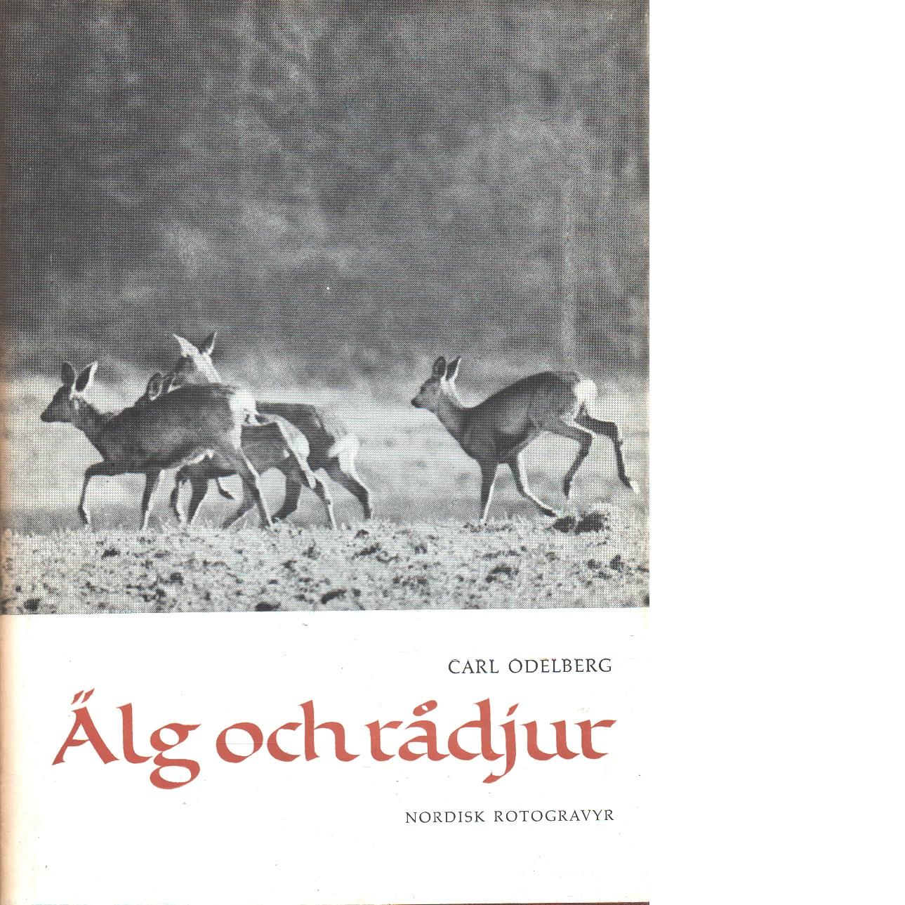 Älg och rådjur - Odelberg, Carl