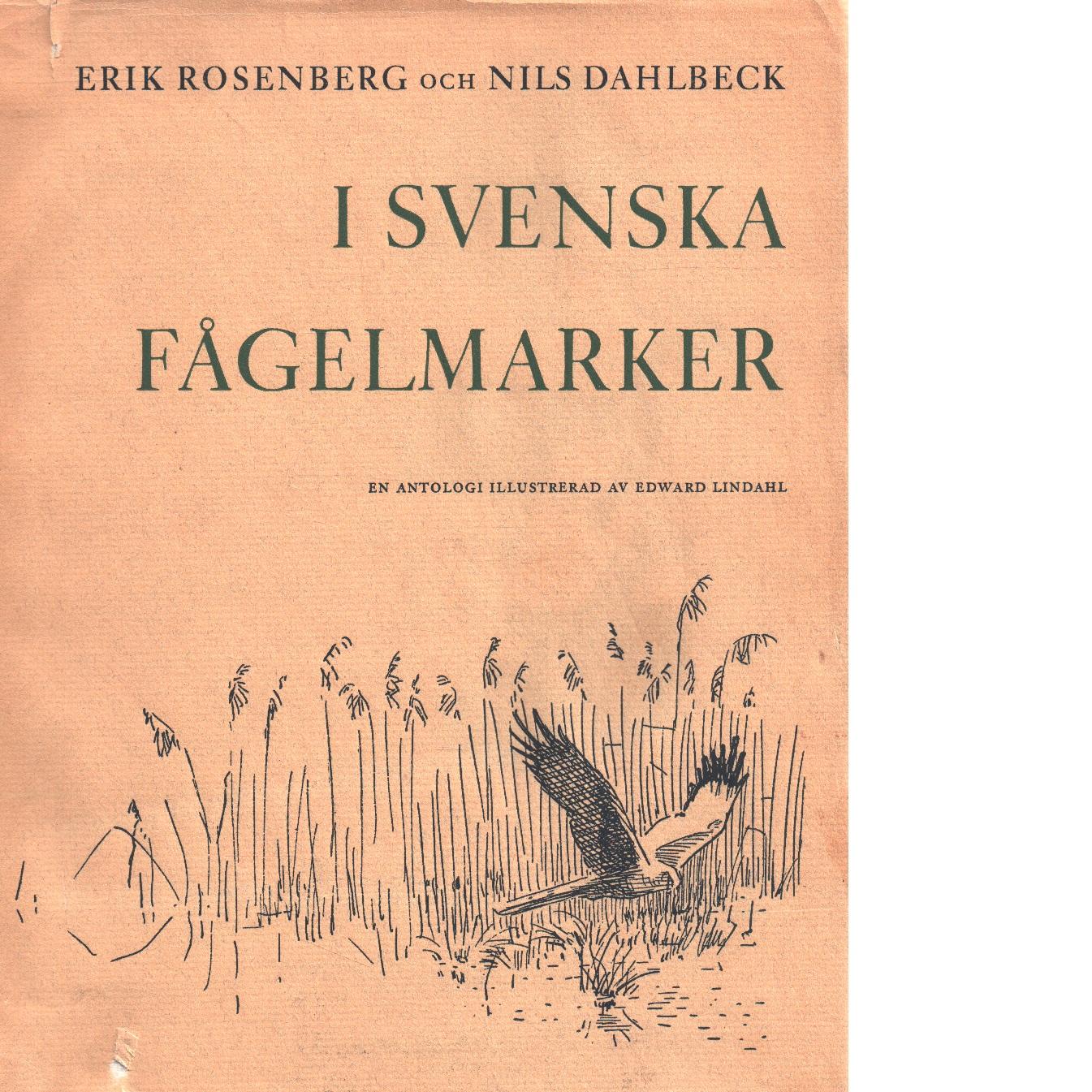 I svenska fågelmarker - Rosenberg, Erik  och Dahlbeck, Nils