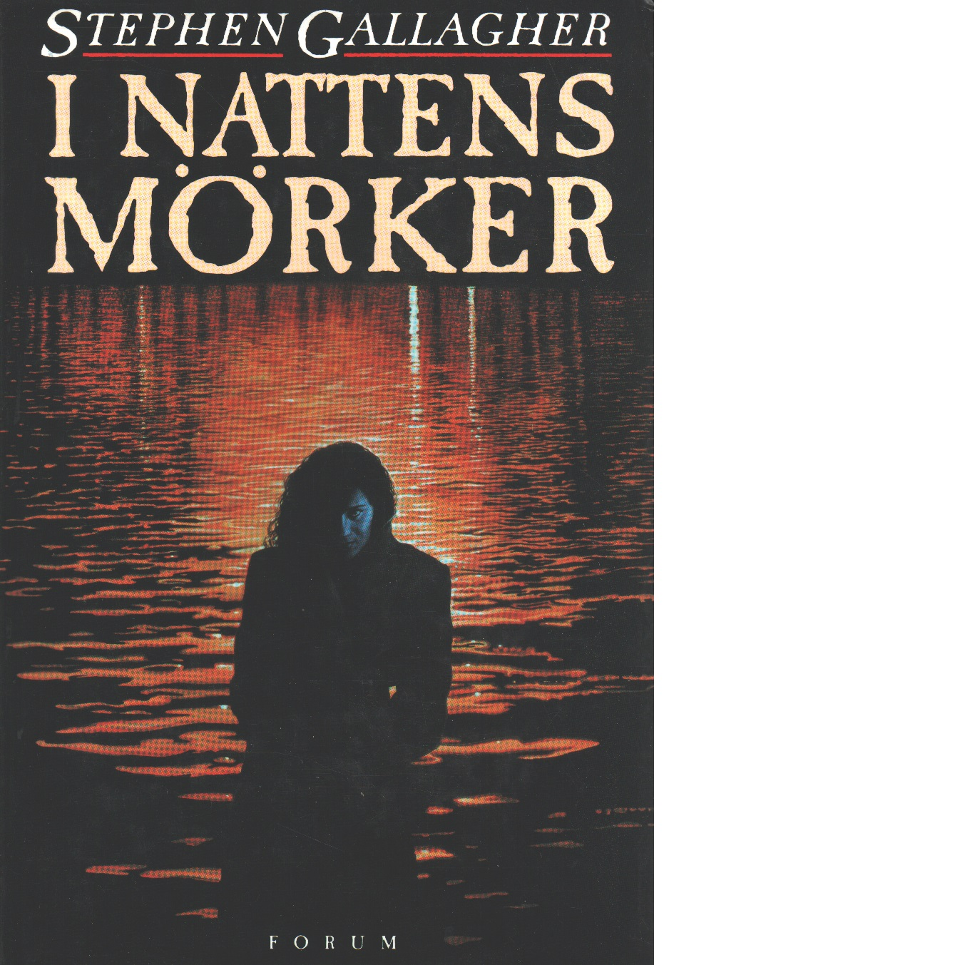 I nattens mörker - Gallagher, Stephen
