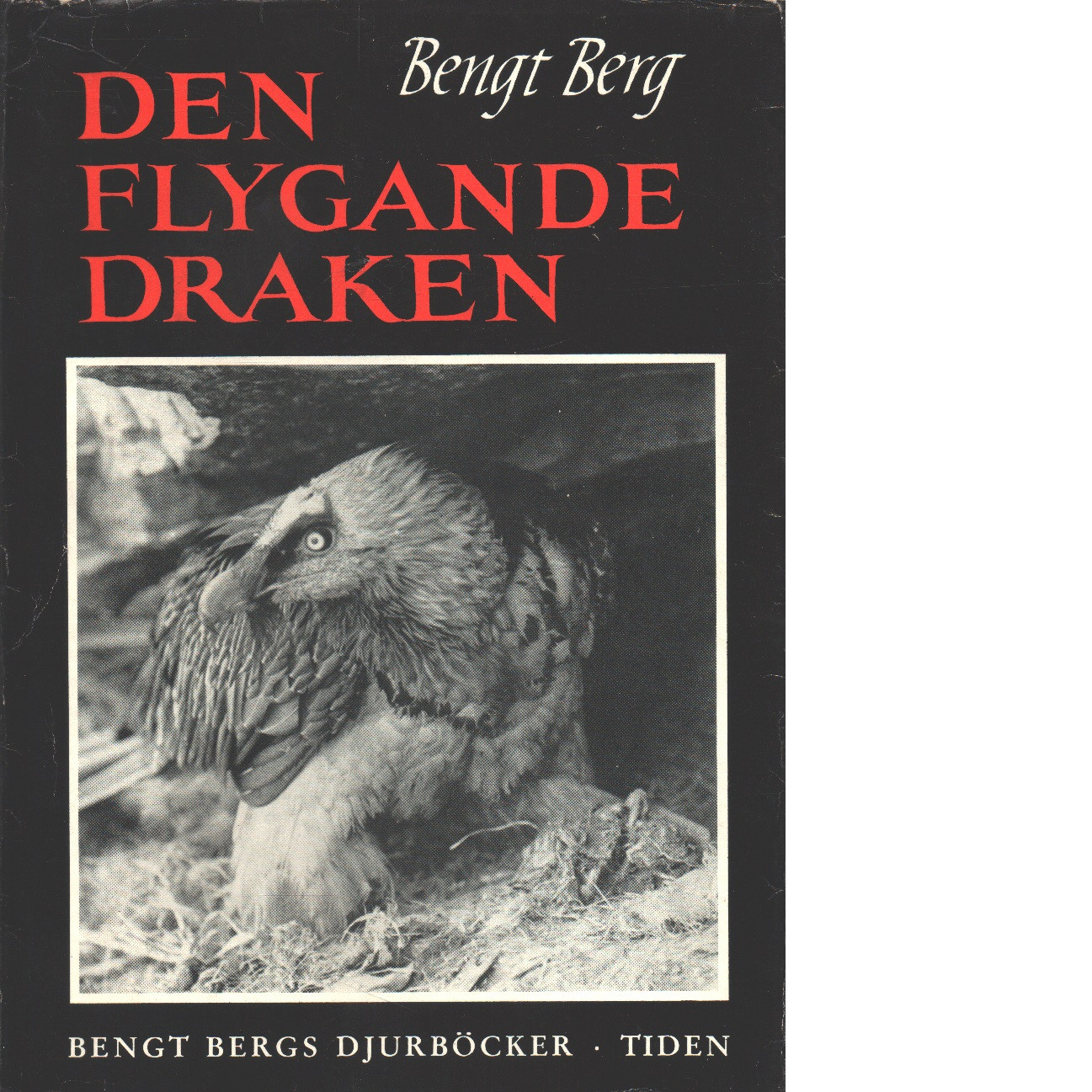 Gypaëtus : den flygande draken i Himalaya - Berg, Bengt