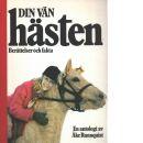 Din vän hästen : berättelser och fakta : en antologi - Red.