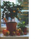 Sätt kärnor, frön och knölar - Rönnblom, Eva