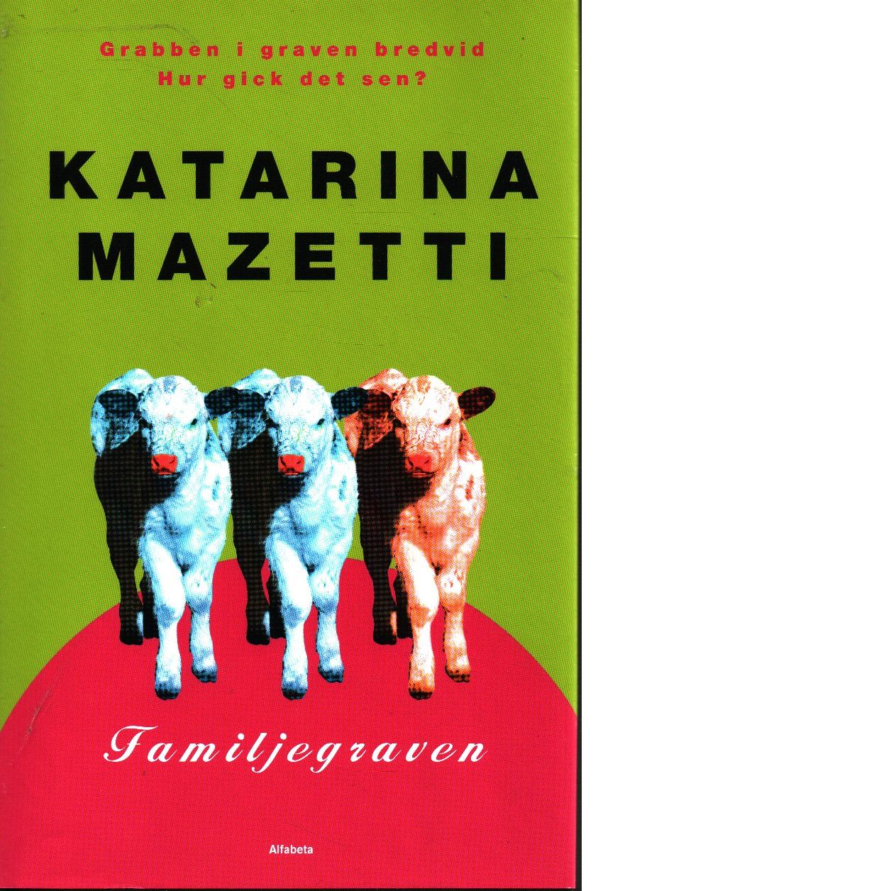 Grabben i graven bredvid - Mazetti, Katarina