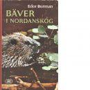 Bäver i nordanskog - Burman, Edor