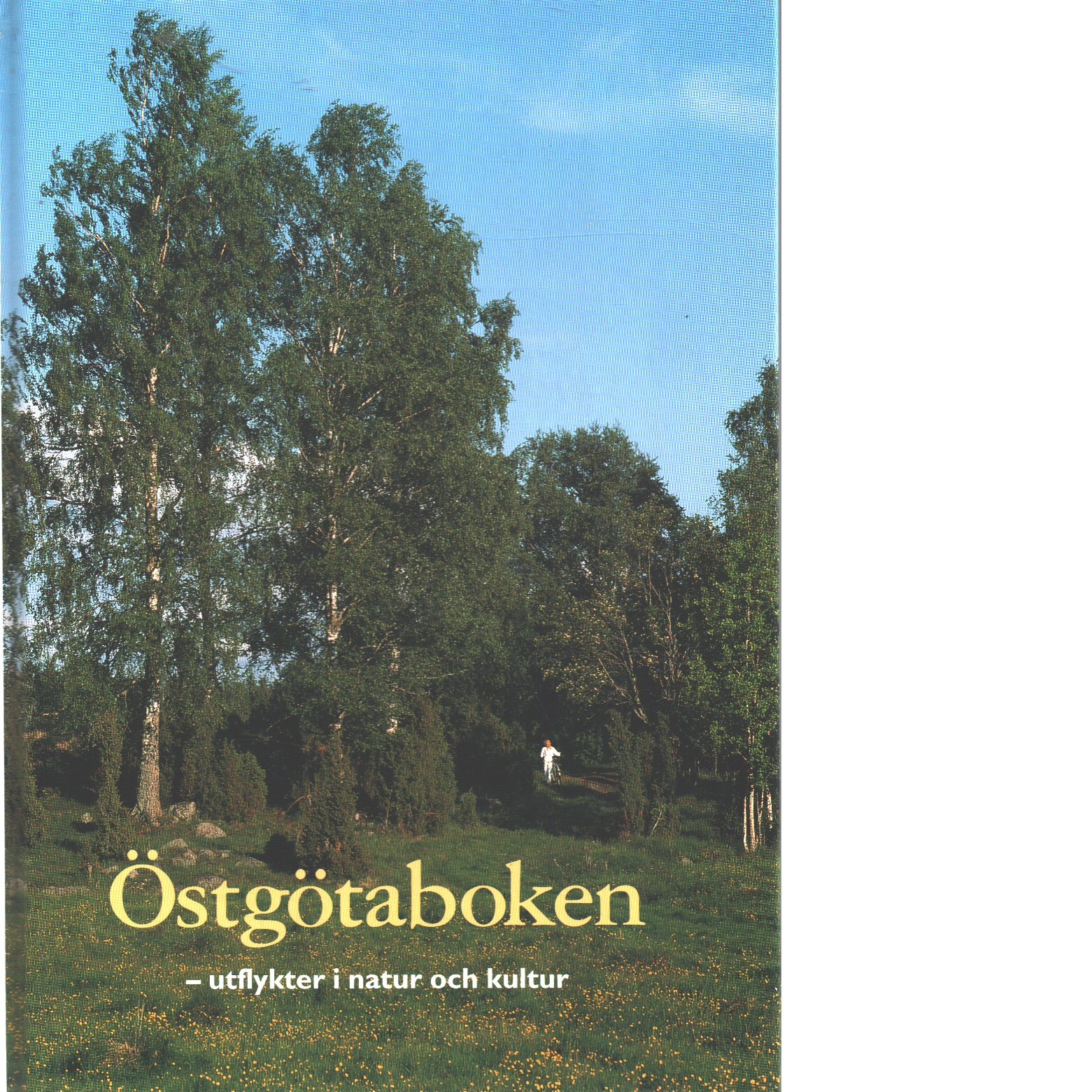 Östgötaboken : utflykter i natur och kultur - Engberg, Magnus Och Bergengren, Göran Samt Kempe, Tord