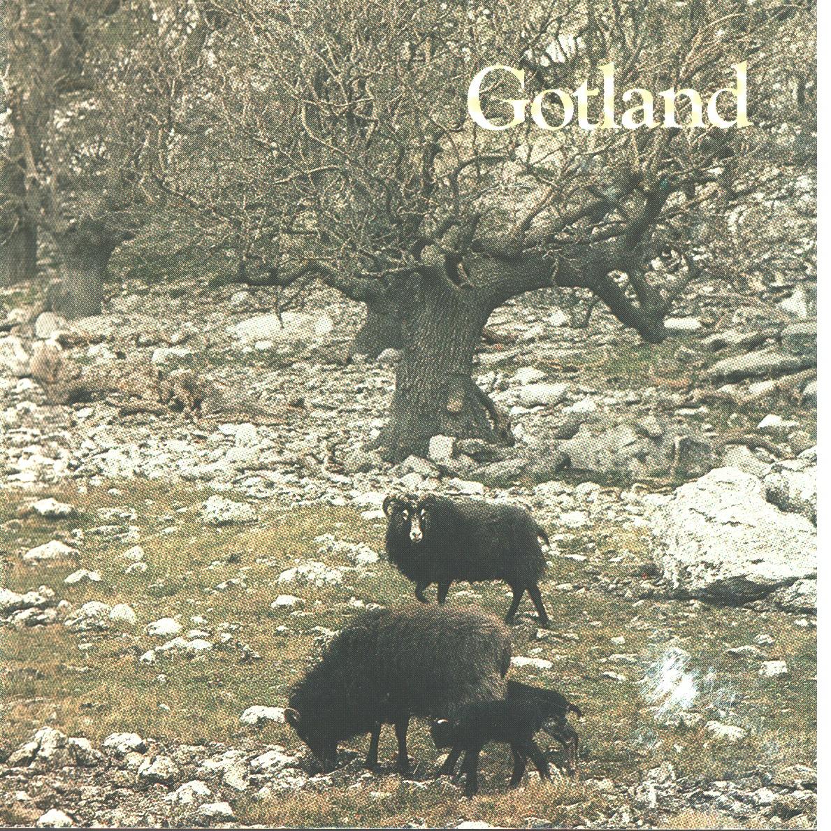 Gotland : den förhäxade ön - Bergqvist, Ulf