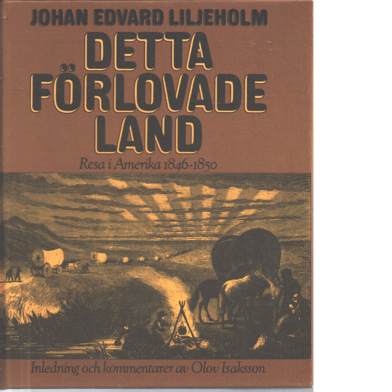 Detta förlovade land : resa i Amerika 1846-1850 - Liljeholm, Johan Edvard