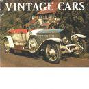 Vintage Cars - Red.