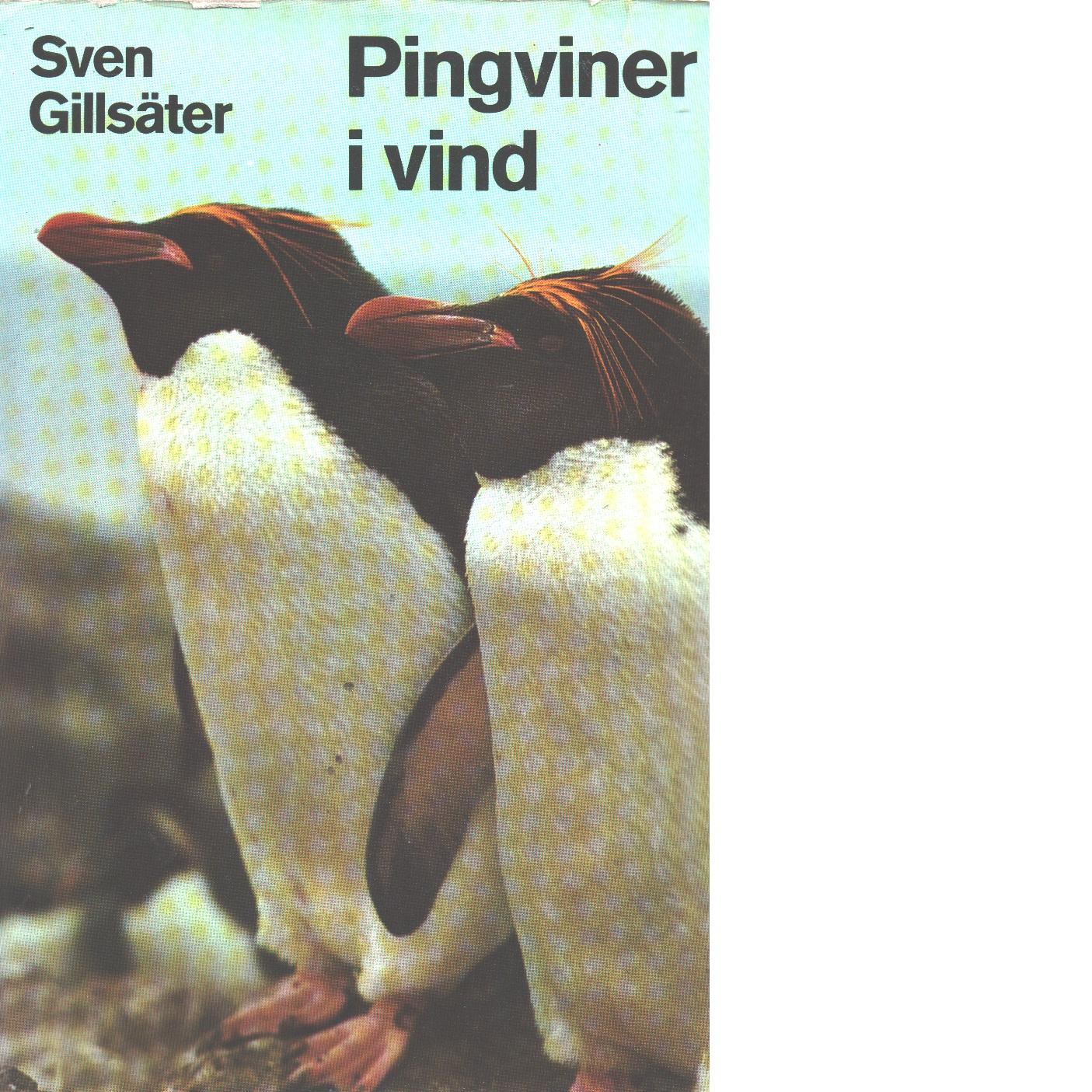 Pingviner i vind : en reseskildring från Falklandsöarna - Gillsäter, Sven